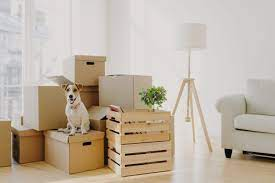 Storage companies & things you should know about them